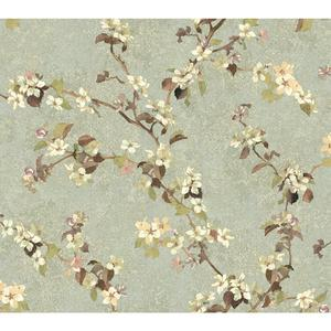 Charlotte Apple Blossom Trail Wallpaper TB4217
