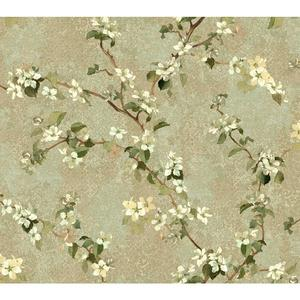 Charlotte Apple Blossom Trail Wallpaper TB4218
