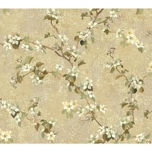 Charlotte Apple Blossom Trail Wallpaper TB4220