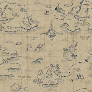 Pirate Map Wallpaper DS7645