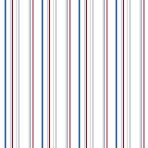 Wide Multi Stripe Wallpaper DS7918