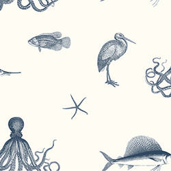 Oceania Navy Sea Creature Wallpaper